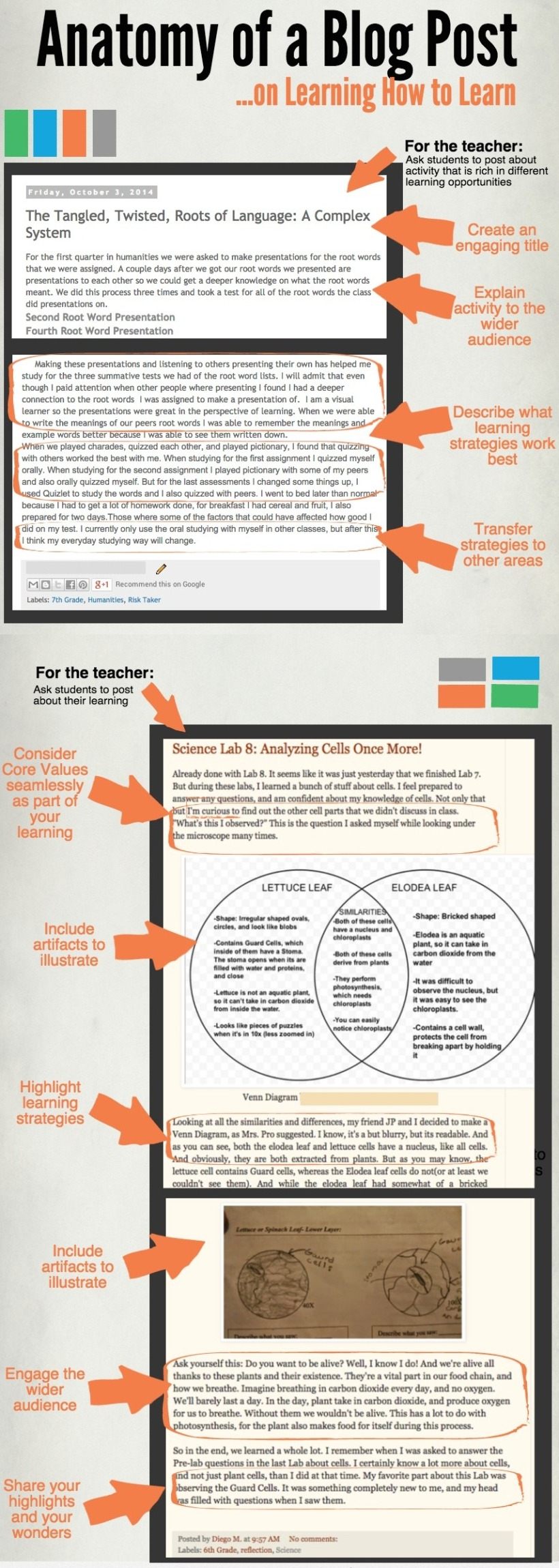 Anatomy of a Blog Post Learn How to Learn
